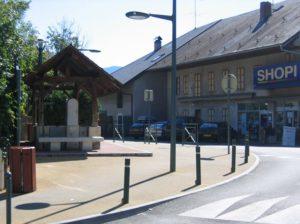 Dambis-Pollarid-Pollar-Hospitalet-Eemaldatav-2